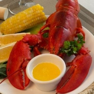 1 and 1/2 lb Maine Lobsters Pack of 2
