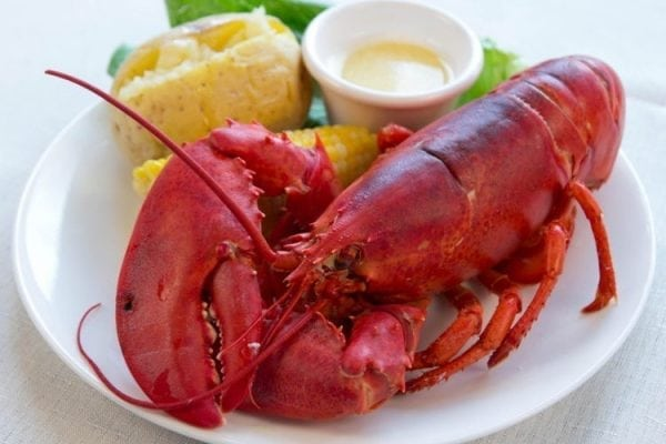1 and 1/2 lb Maine Lobsters Pack of 9