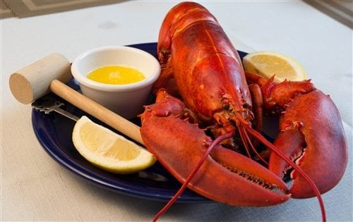 MAINE LOBSTER BAKE SPECIAL