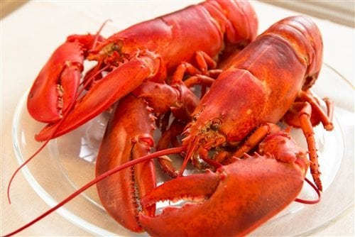SEAFOOD PARTY PACK – SERVES 10