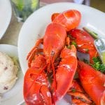 Health Benefits of Eating Lobster
